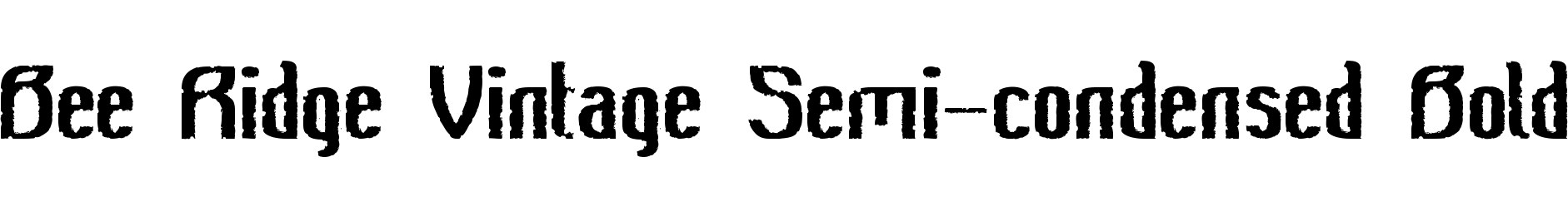 Bee Ridge Vintage Semi-condensed Bold