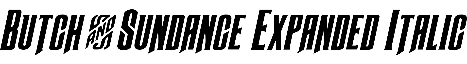 Butch & Sundance Expanded Italic