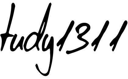 tudy1311