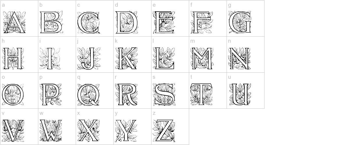 Acorn Initials lowercase